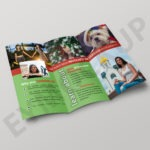 Tri-fold Attractive Photography Brochure Template