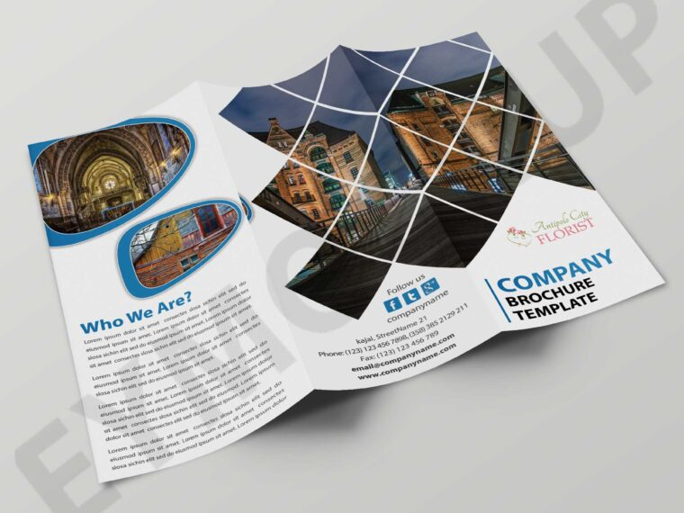 Tourist Holiday Tri-Fold Brochure