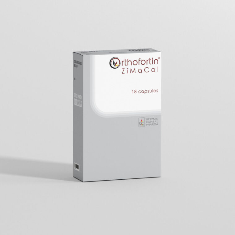 CD DVD Packaging Box Mockup